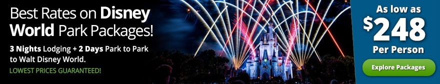Rainy Days at Walt Disney World | OrlandoVacation com