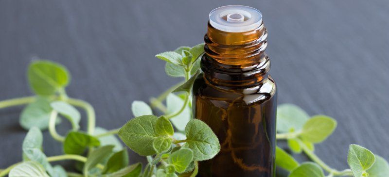 Benefits of Oregano Oil Extract