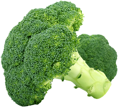broccoli-1450274__340.png