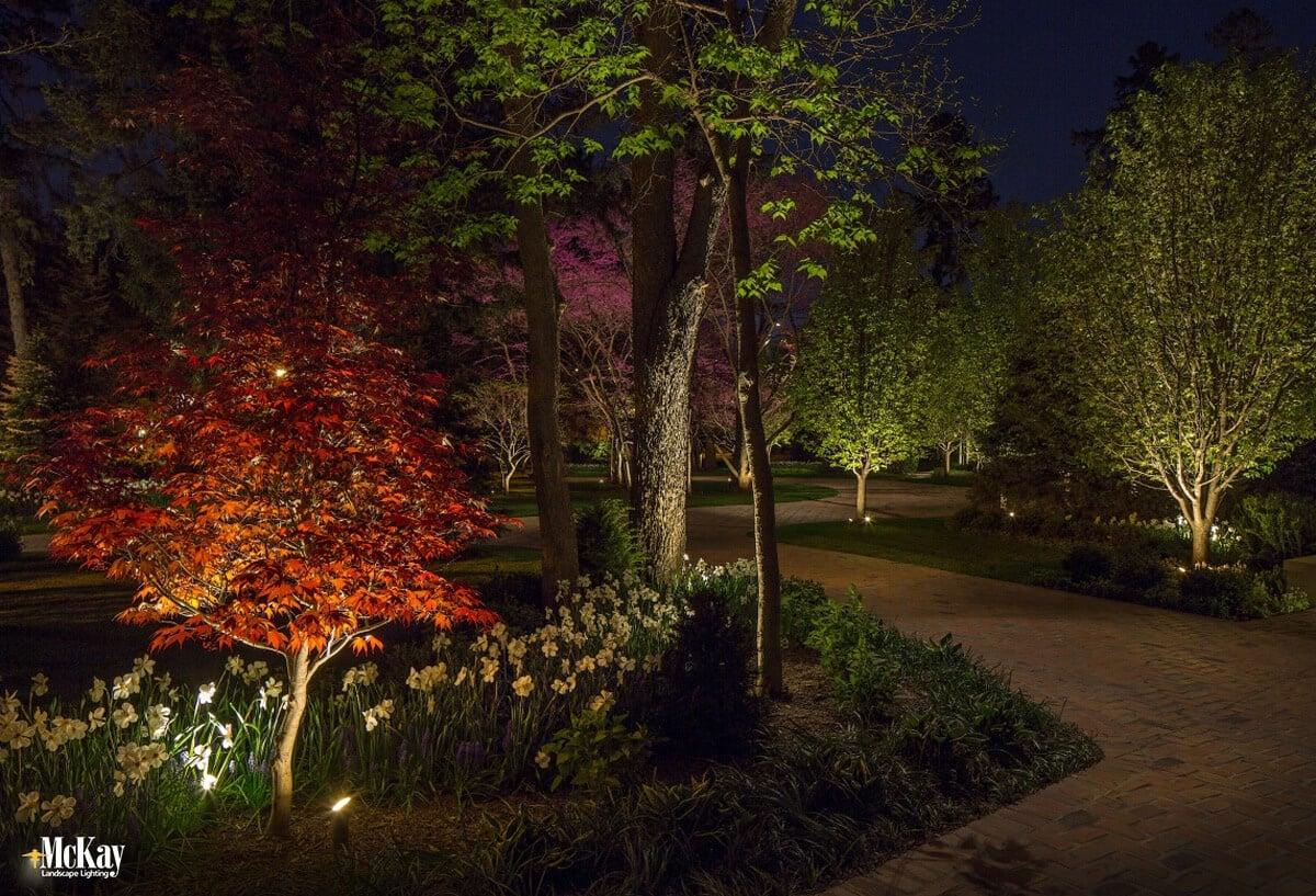 Landscape lighting maintenance tips mulching for Landscape tree lighting