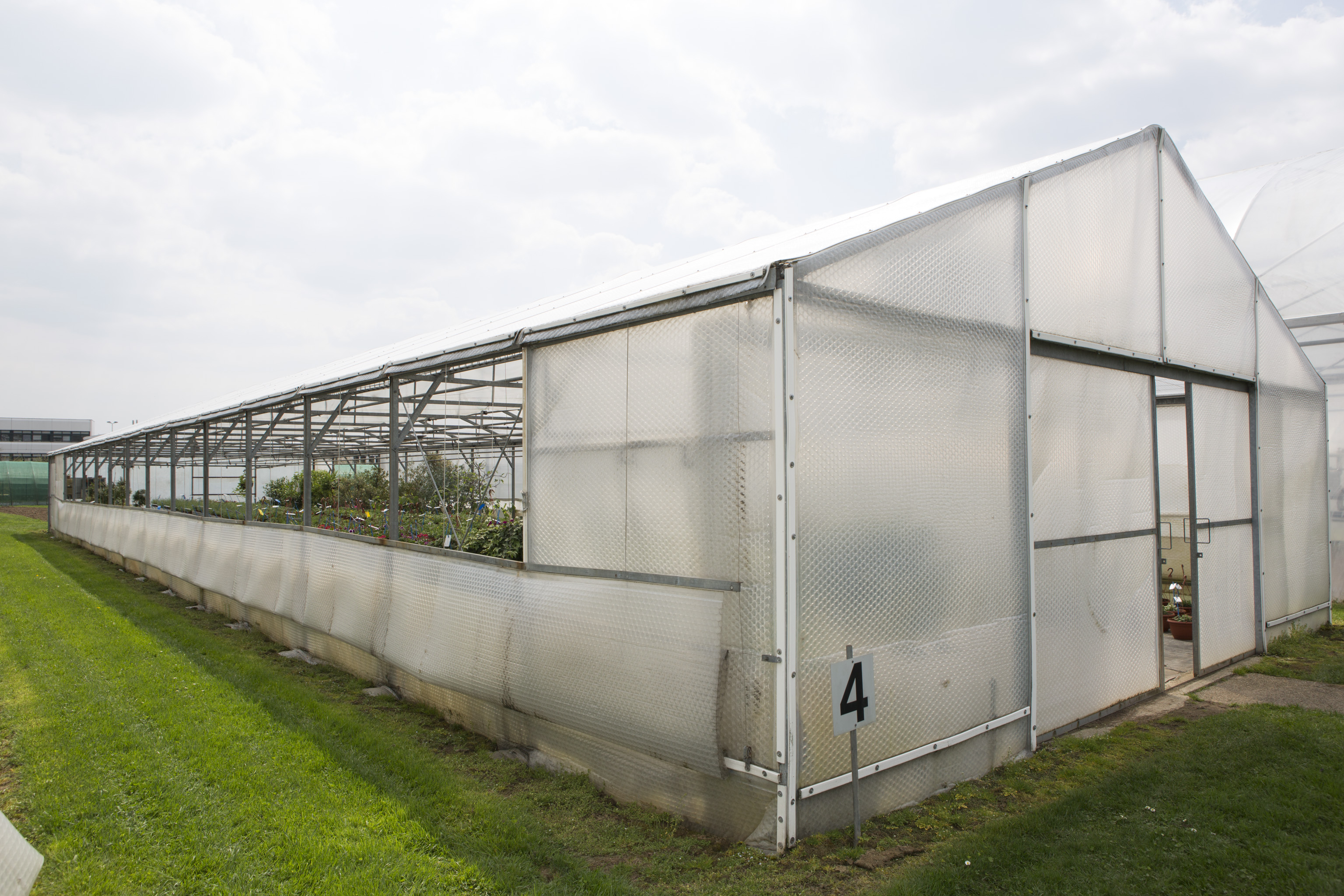 Solawrap_Greenhouse_Cover.jpg