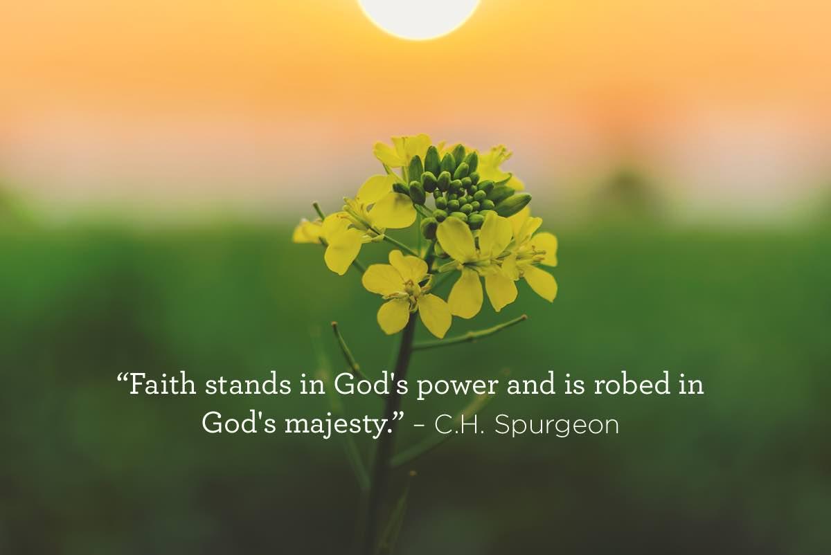 thumbnail image for Faith