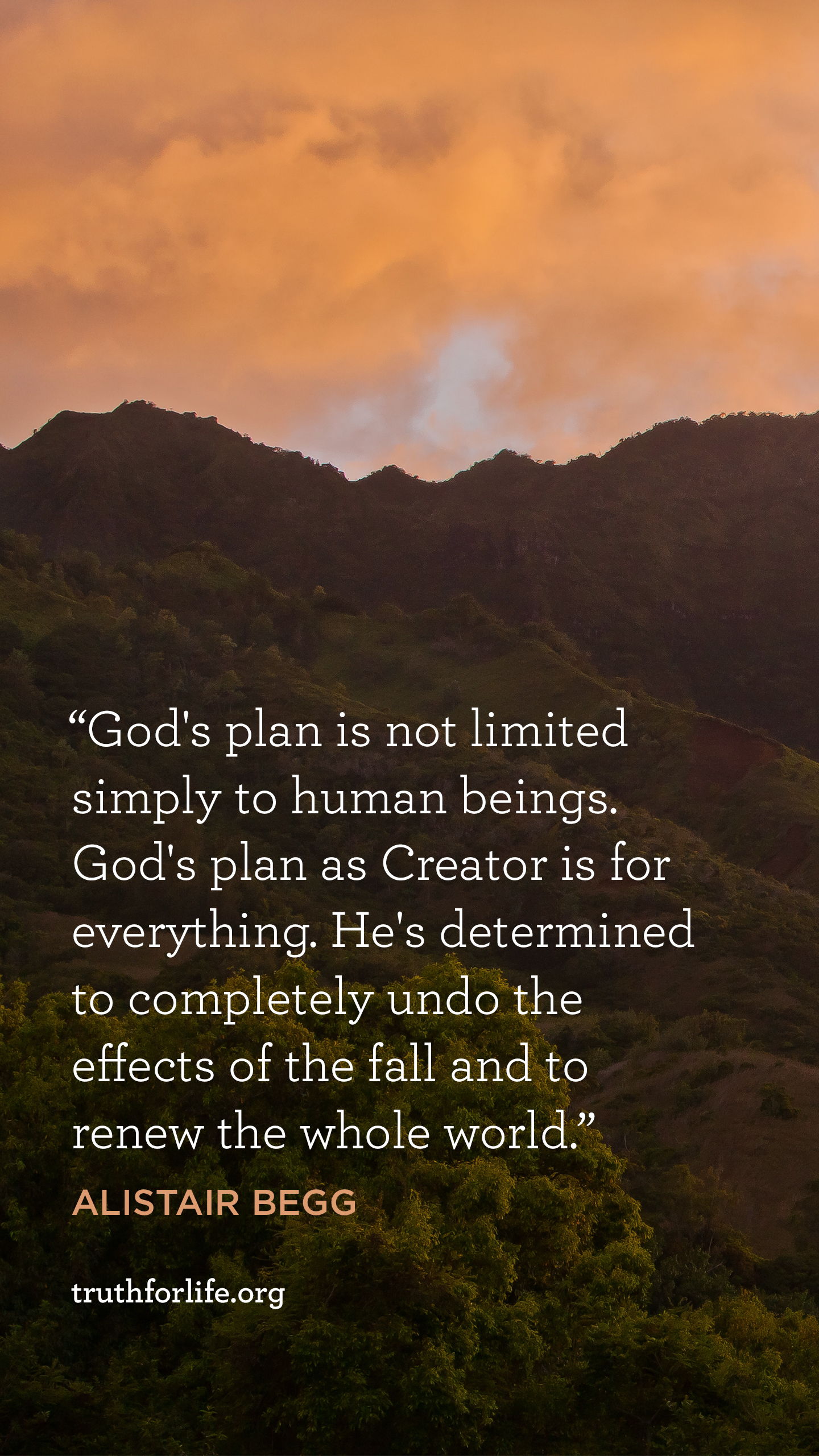 Gods Plan Wallpaper