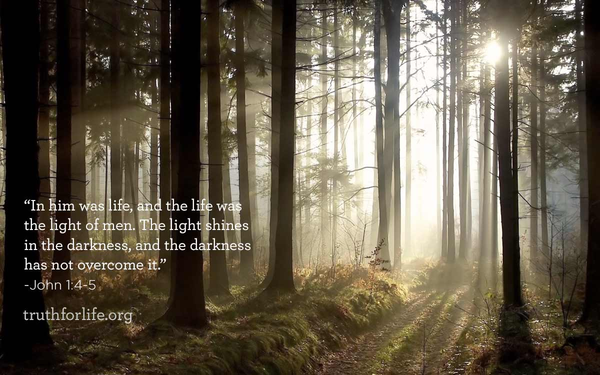 Featured image for Shines in the Darkness : Wallpaper