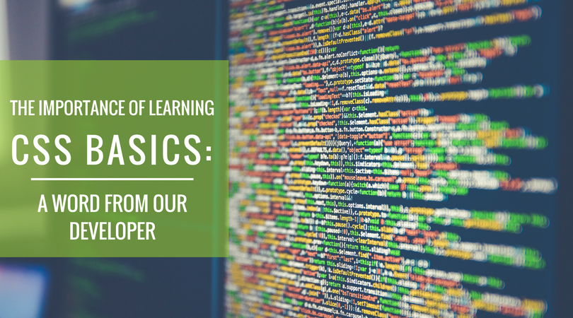 The Importance of LearningCSS Basics-A Word from Our Developer.png?noresize