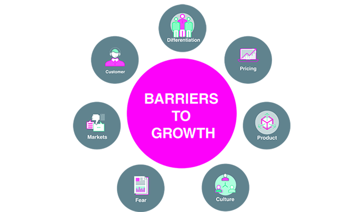 Barriers to growth 1400px