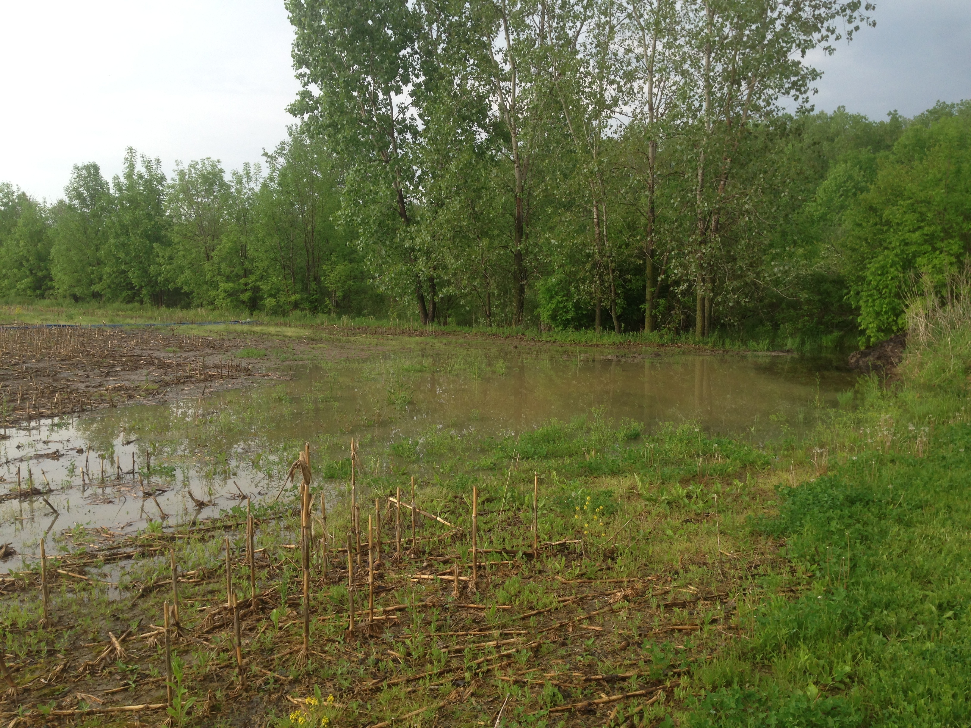Pond over flow pipe repair michigan ray township for Garden pond overflow design