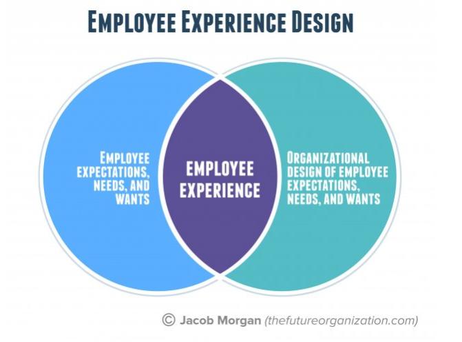 jacob morgan employee experience