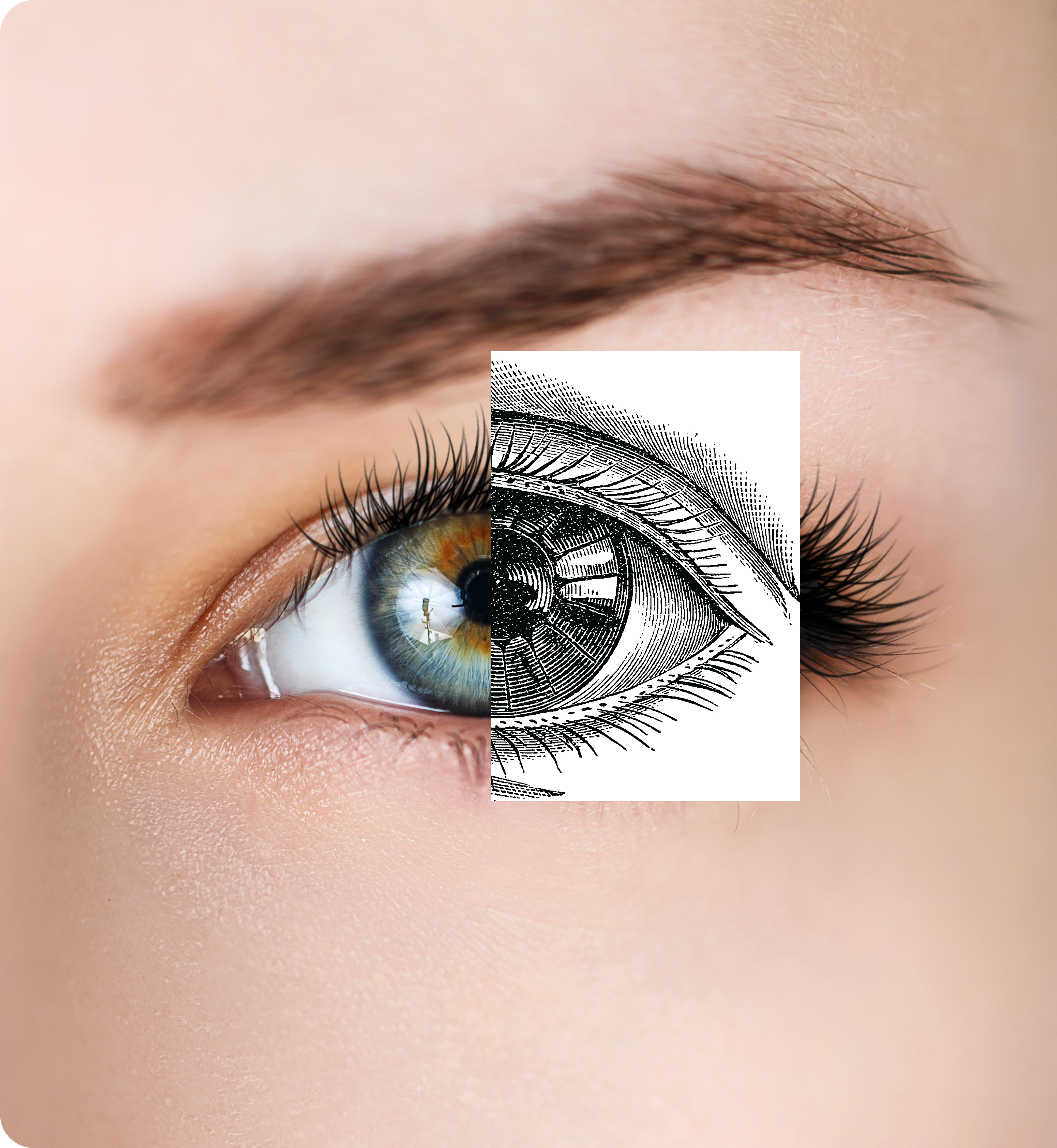 Half of an eye joined to a sketch of the eye mimicking its natural appearance.