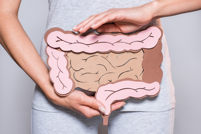 The Many Benefits of Bifidobacteria Probiotics - Keystone Microbes for Gut and Immune Health
