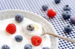 What are Prebiotics and Probiotics?