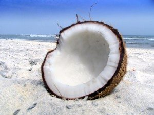 Study Compares the Effect of Soybean and Coconut Oil On Belly Fat and Heart Disease Risk in Women