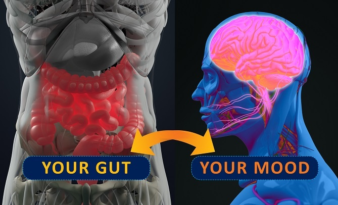 Gut Health and Inflammation: New Targets to Manage Depression Naturally