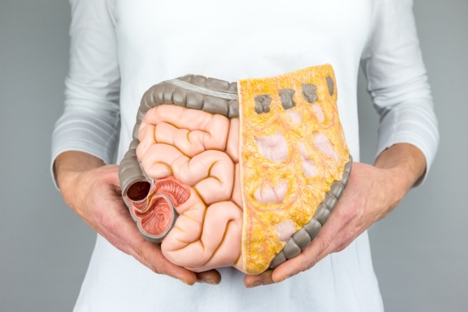 Metabolic Secrets - Maintaining Healthy Weight Starts in the Gut