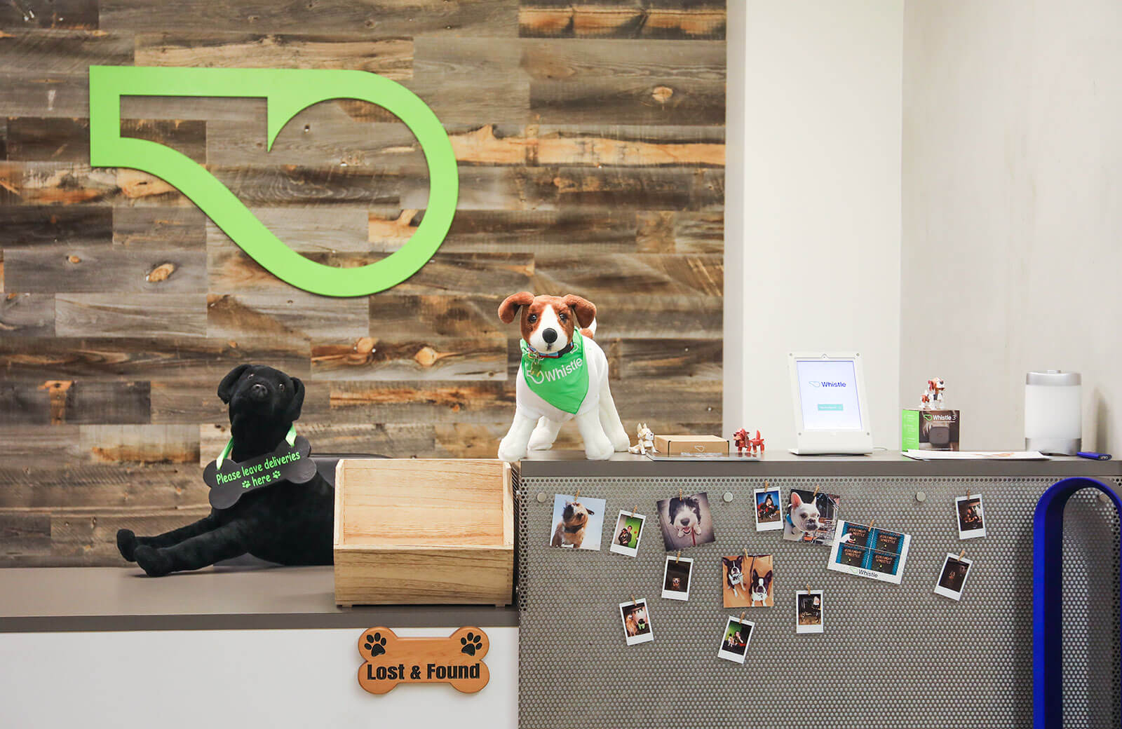 Dog-Friendly-Office-Culture