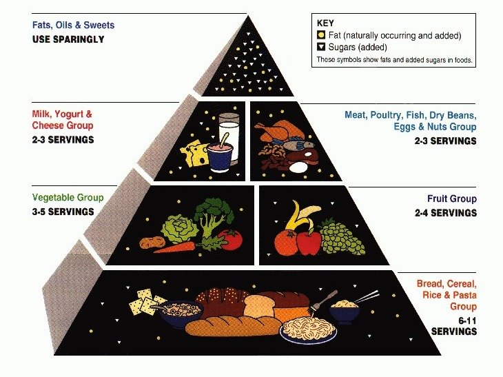 1992 Food Pyramid