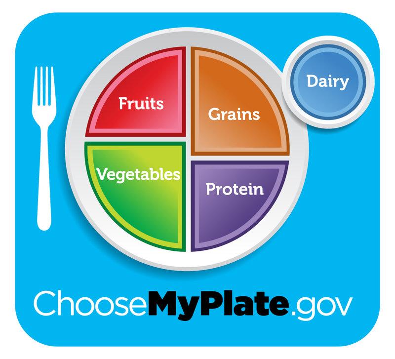 2011 Food Plate