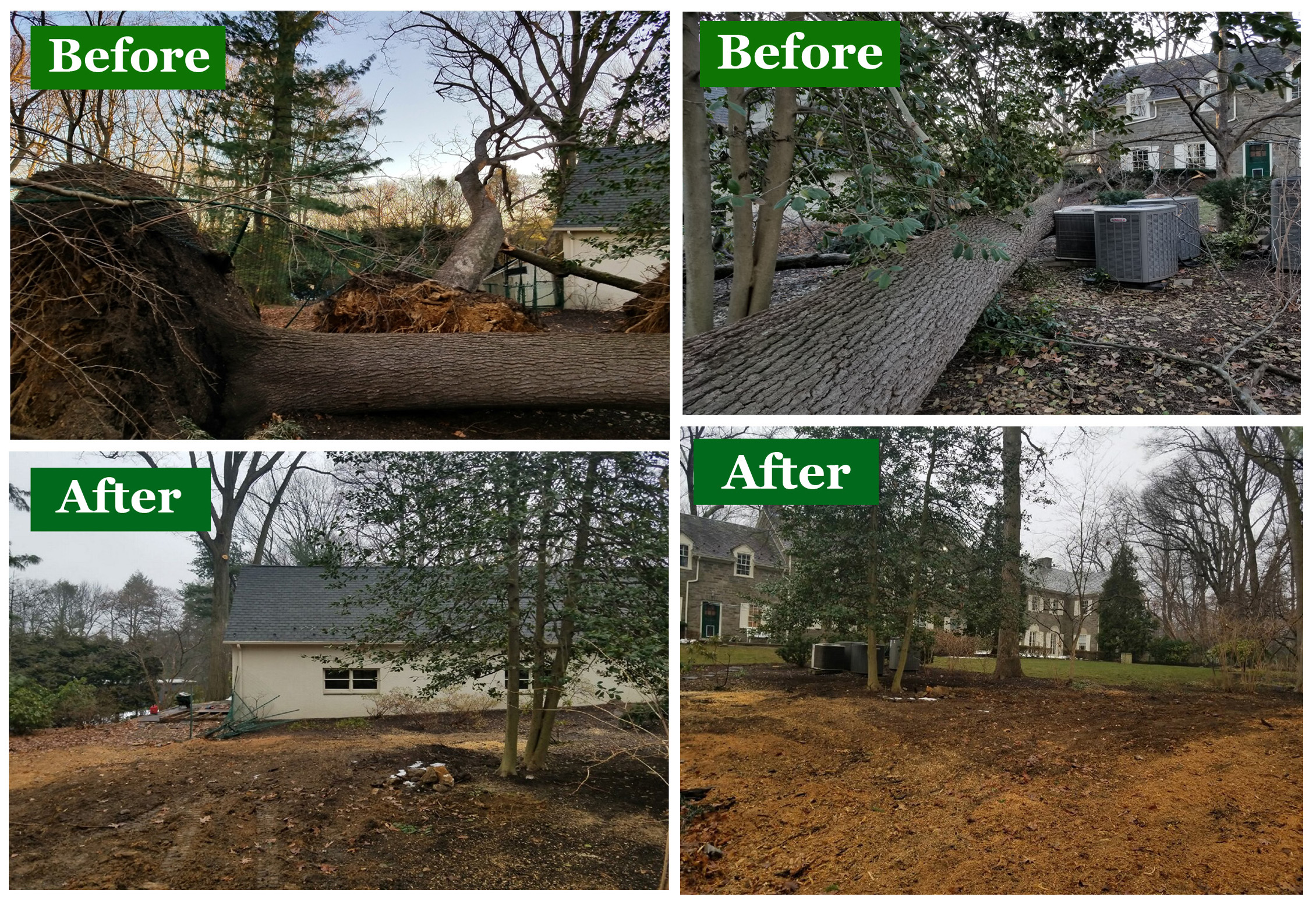 2018-Mar-2-Winter-Storm-Meadowbrook-Nagy-Rombold-Newcombe-Leary-Before-After-3