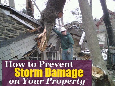 2019-(2)-How-to-Prevent-Winter-Storm-Damage-on-Your-Property-Hubspot