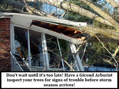 Catastrophic-Storm-Damage-tree-on-sunroom