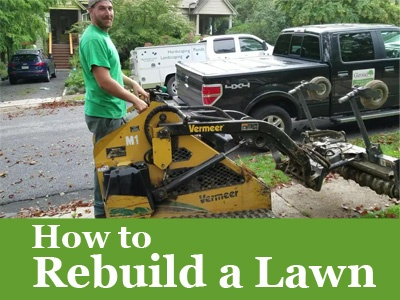 How to Rebuild a Lawn