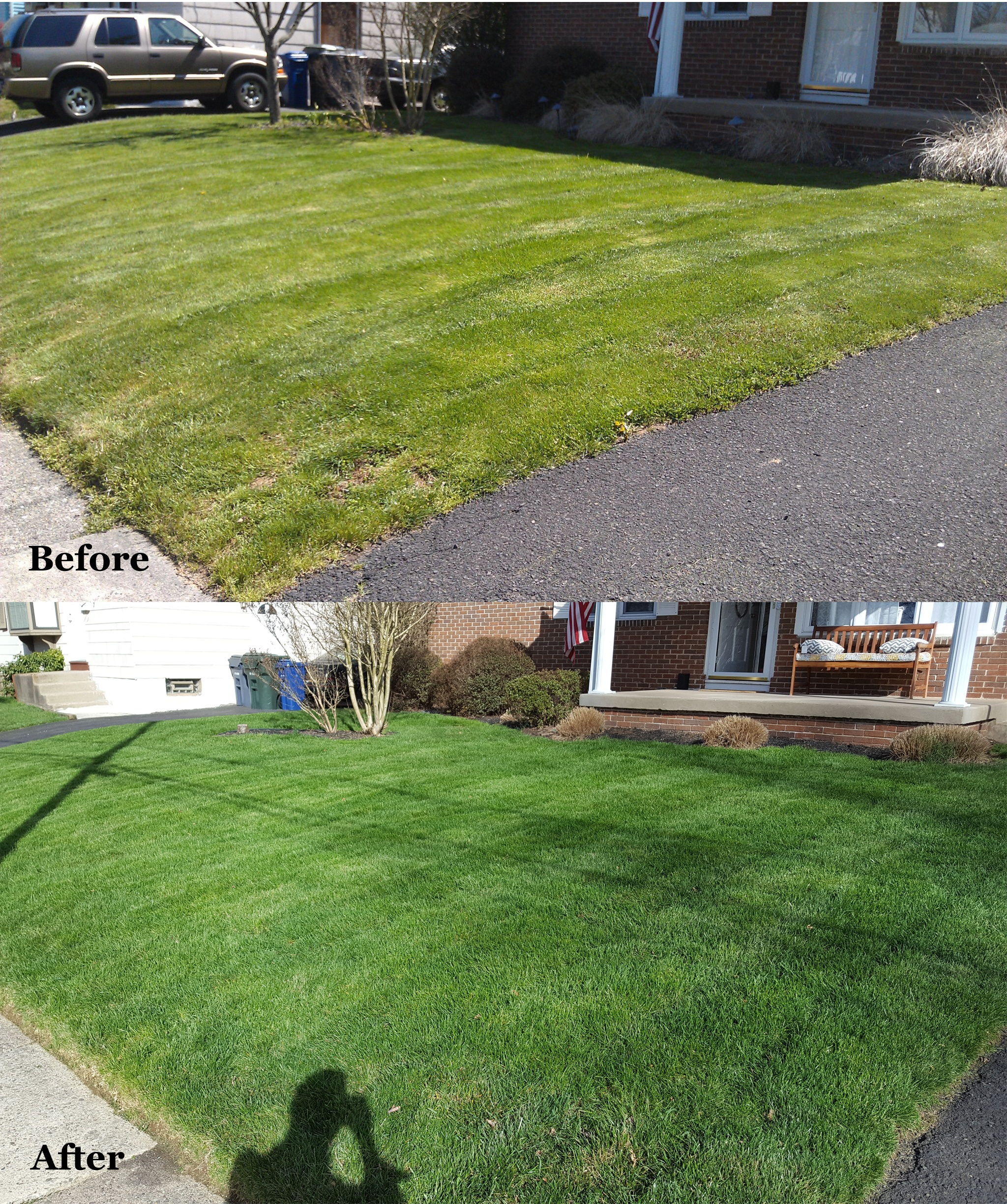Lawn Before and After Giroud Lawn Treatments