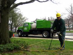 Tree Fertilization treatments give your trees the nutrients needed to thrive