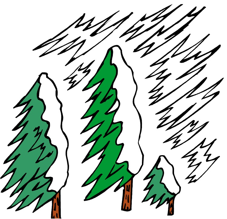 Heavy snow can easily weigh down branches, increasing their chances of breaking off.