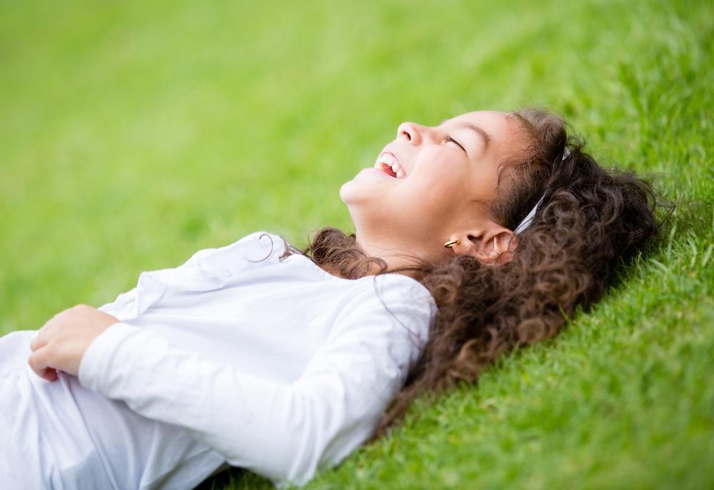 Organic vs Traditional Lawn Care
