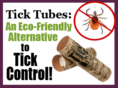 Tick Tube-Hubspot Headerjpg