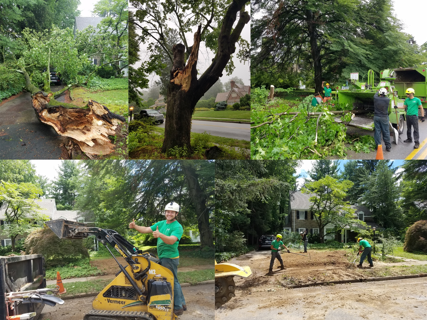Tree breaks in a storm and Giroud Tree Service Crew cleans up the damage.