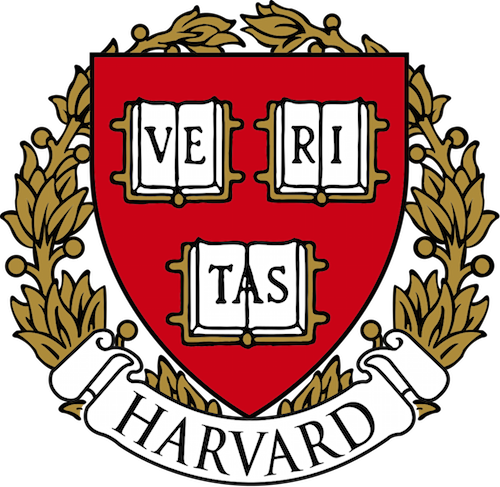 How long should my Harvard additional essay be?