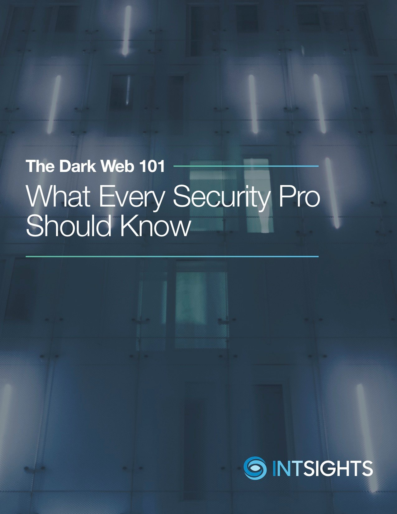 WP-DarkWeb101-Nov 2017-cover3