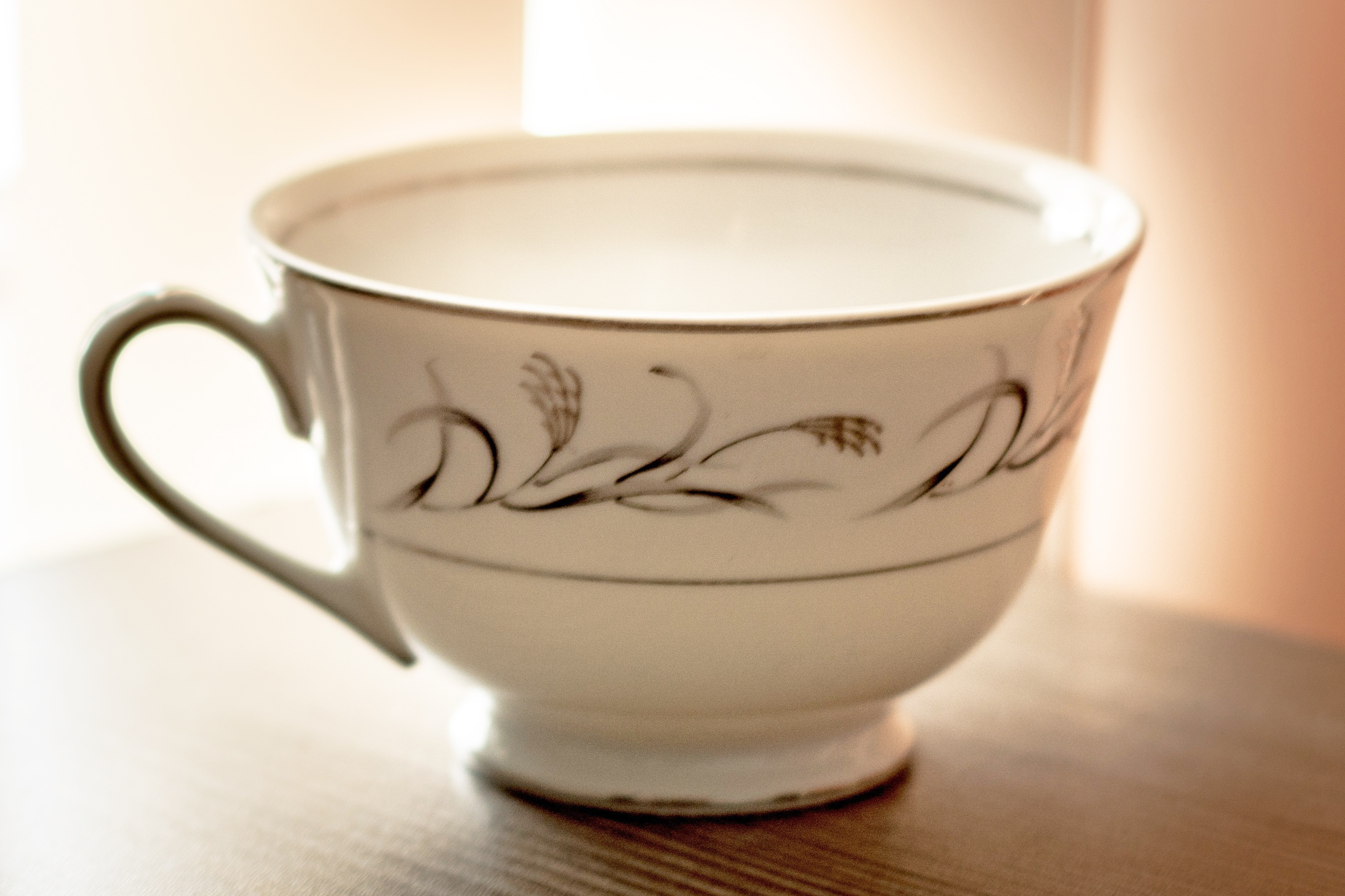 White porcelain teacup