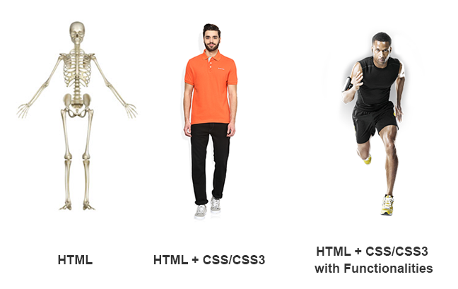 HTML+ CSS3.png