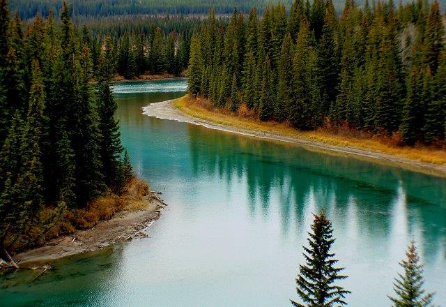 Explore Vancouver Island Without Accomodation Costs Free Rv Camping A Road Trip In Canada Is One