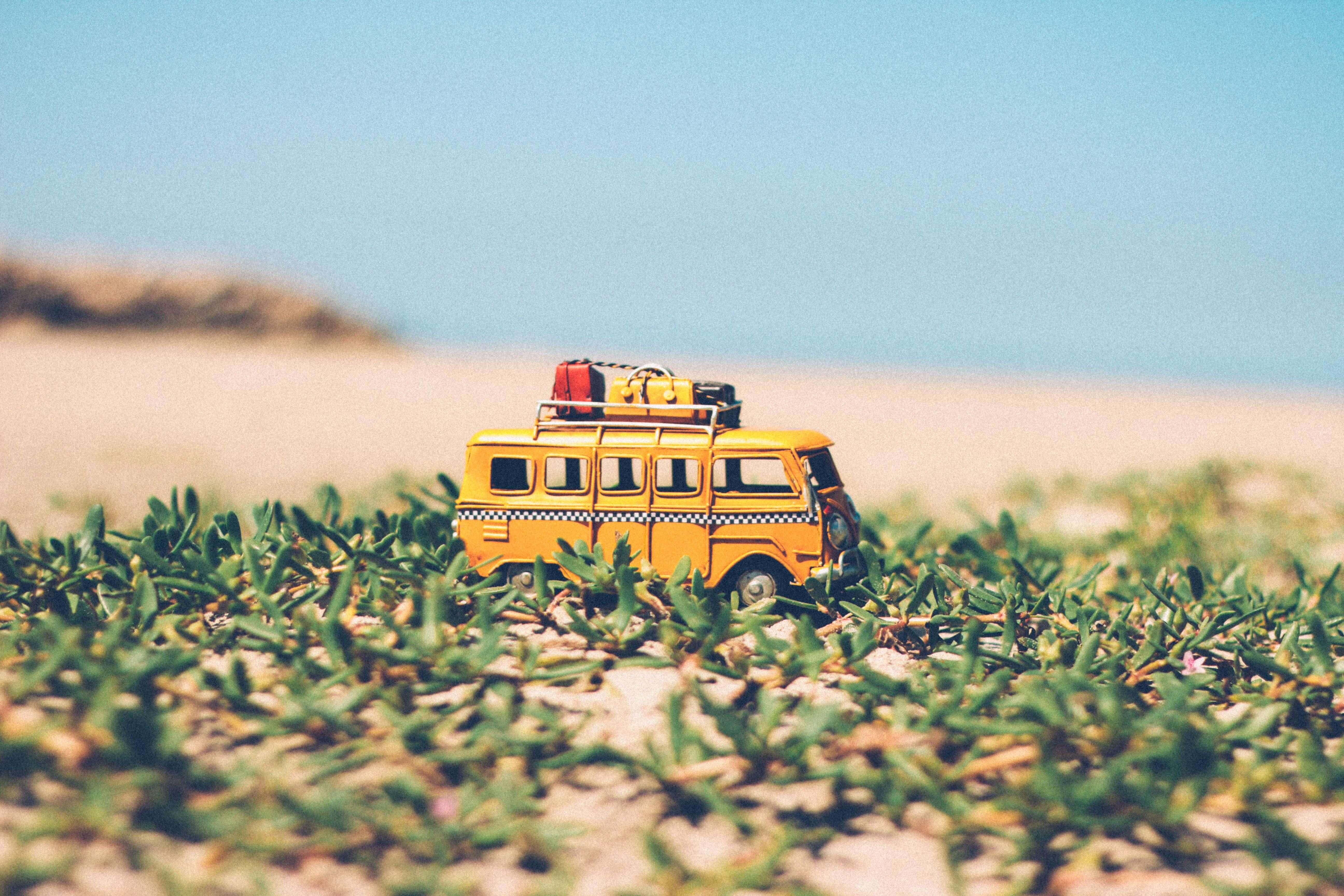 agriculture-beach-blur-386010 (1)