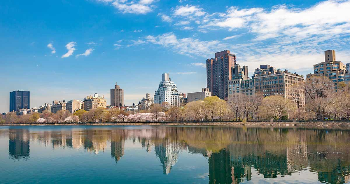 What Are New York's Nursing CE Requirements?