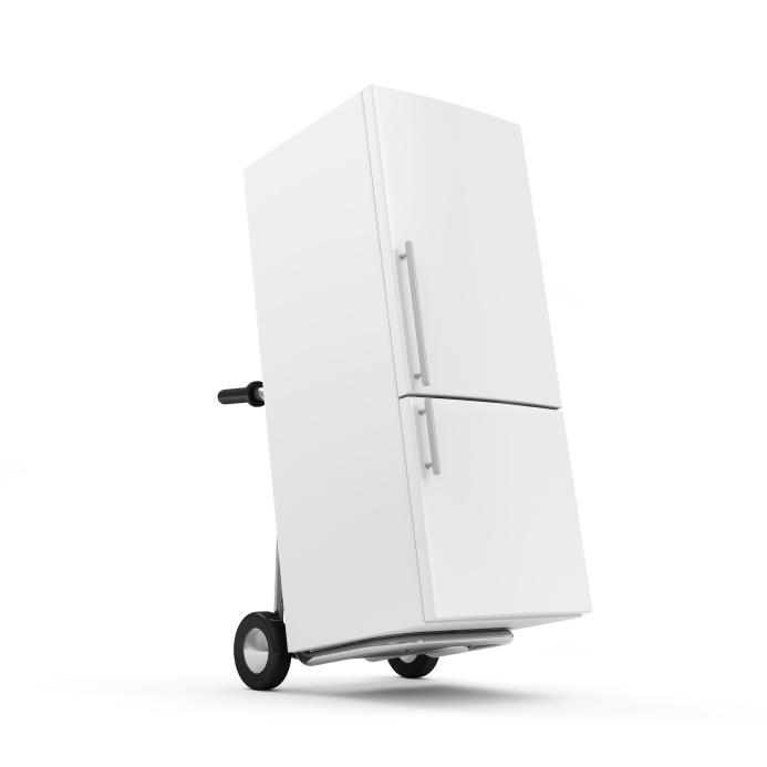 Reframing_Refrigerator