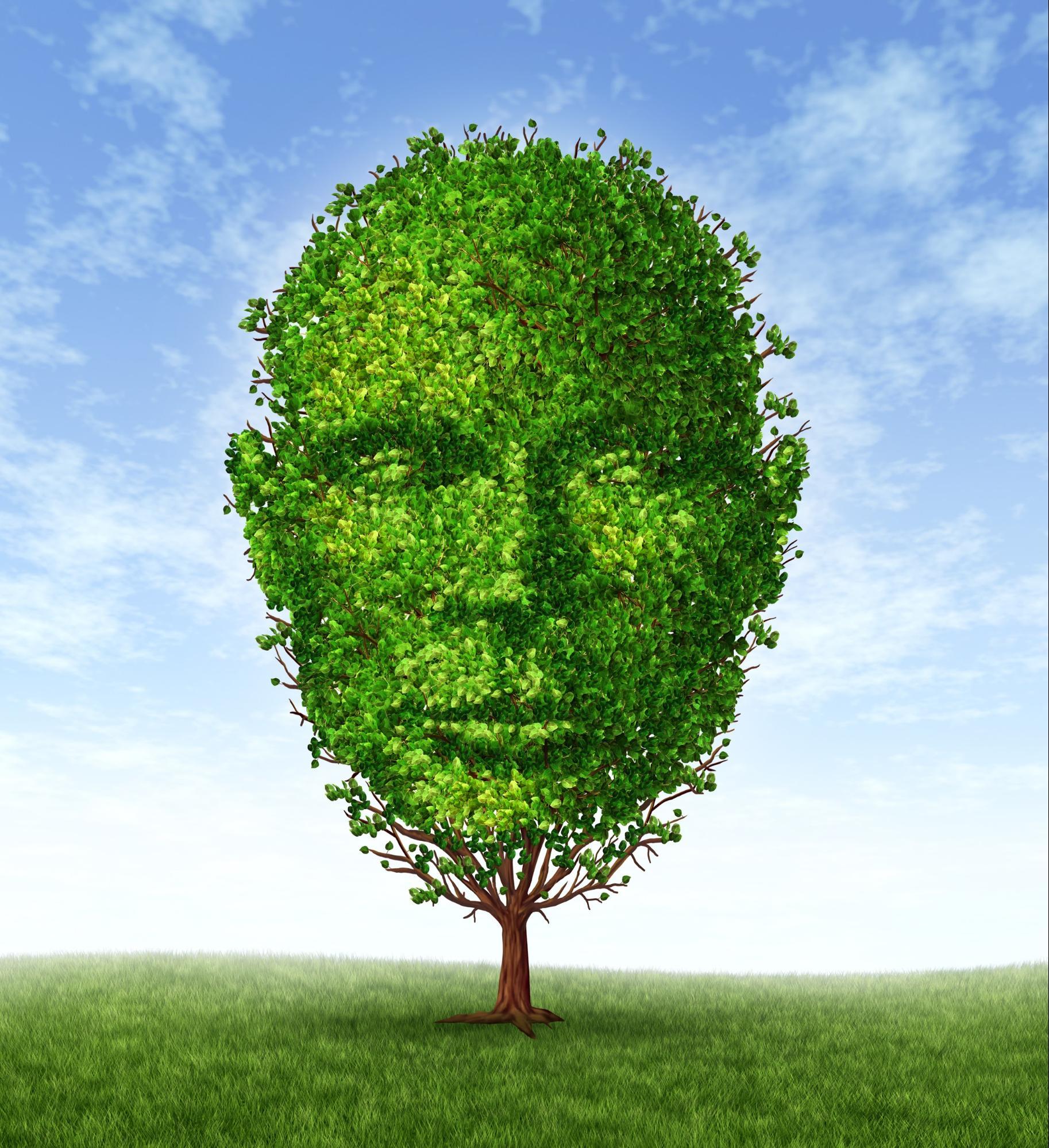 Morgan Sanderson Pinckney Marketing Head in Tree