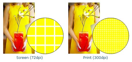 pinckney_marketing_yellow_woman_pattern