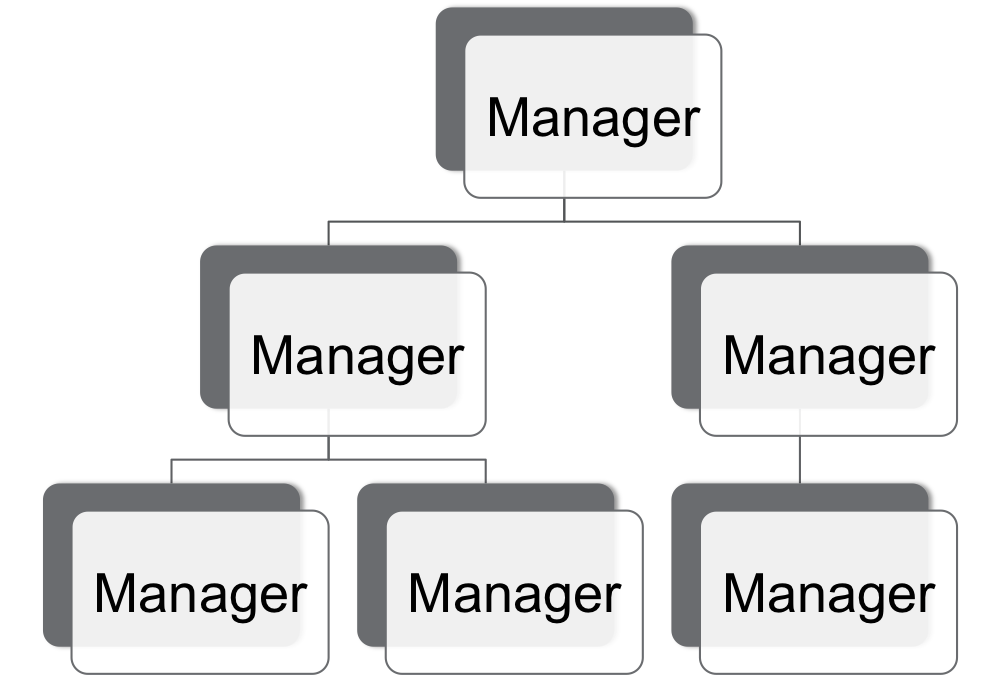 Manager Flow Chart