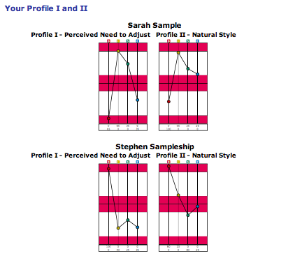 Extended DISC Work Pair Profiles