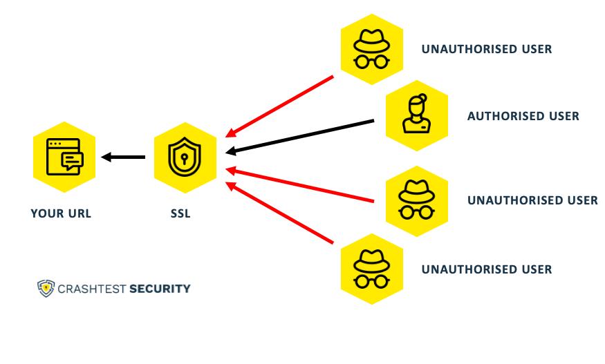 The visual representation of HTTPS Websites
