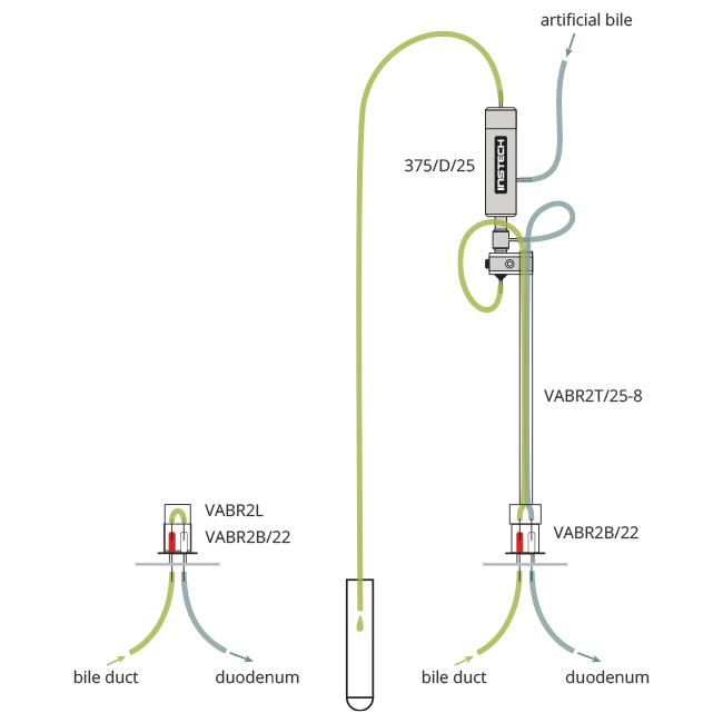 Rat Bile Sampling with Replacement Salts   Bile Sampling   Instech