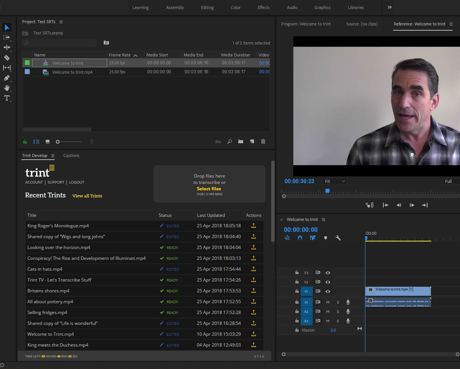 Trint Adobe Premiere Extension Panel