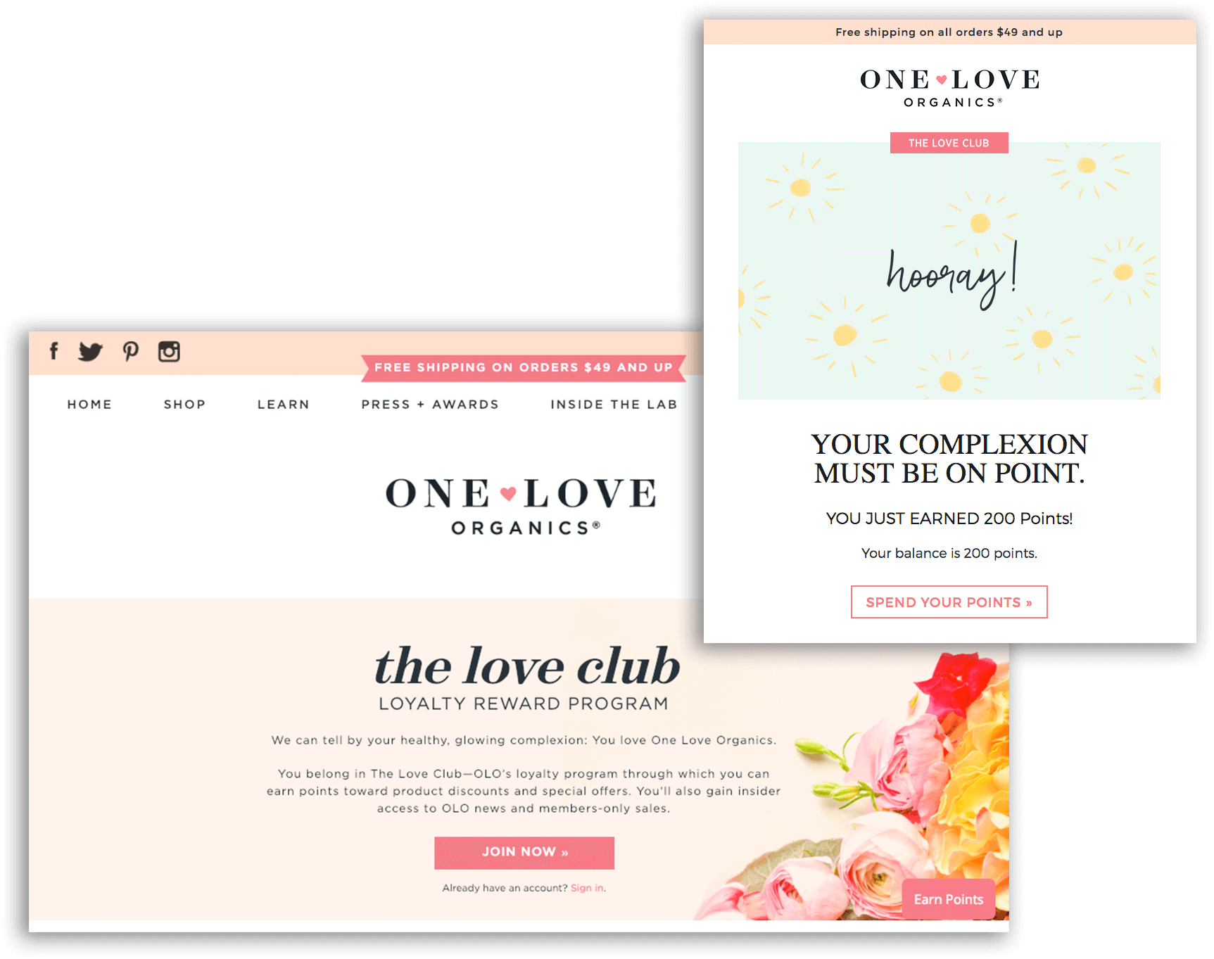 Consistent Tone of Voice - One love organics email and explainer
