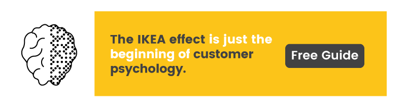 Themes like the IKEA effect are discussed in our reward psychology Ebook