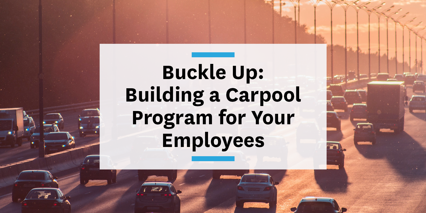Building a carpool program for your employees and commute management strategy