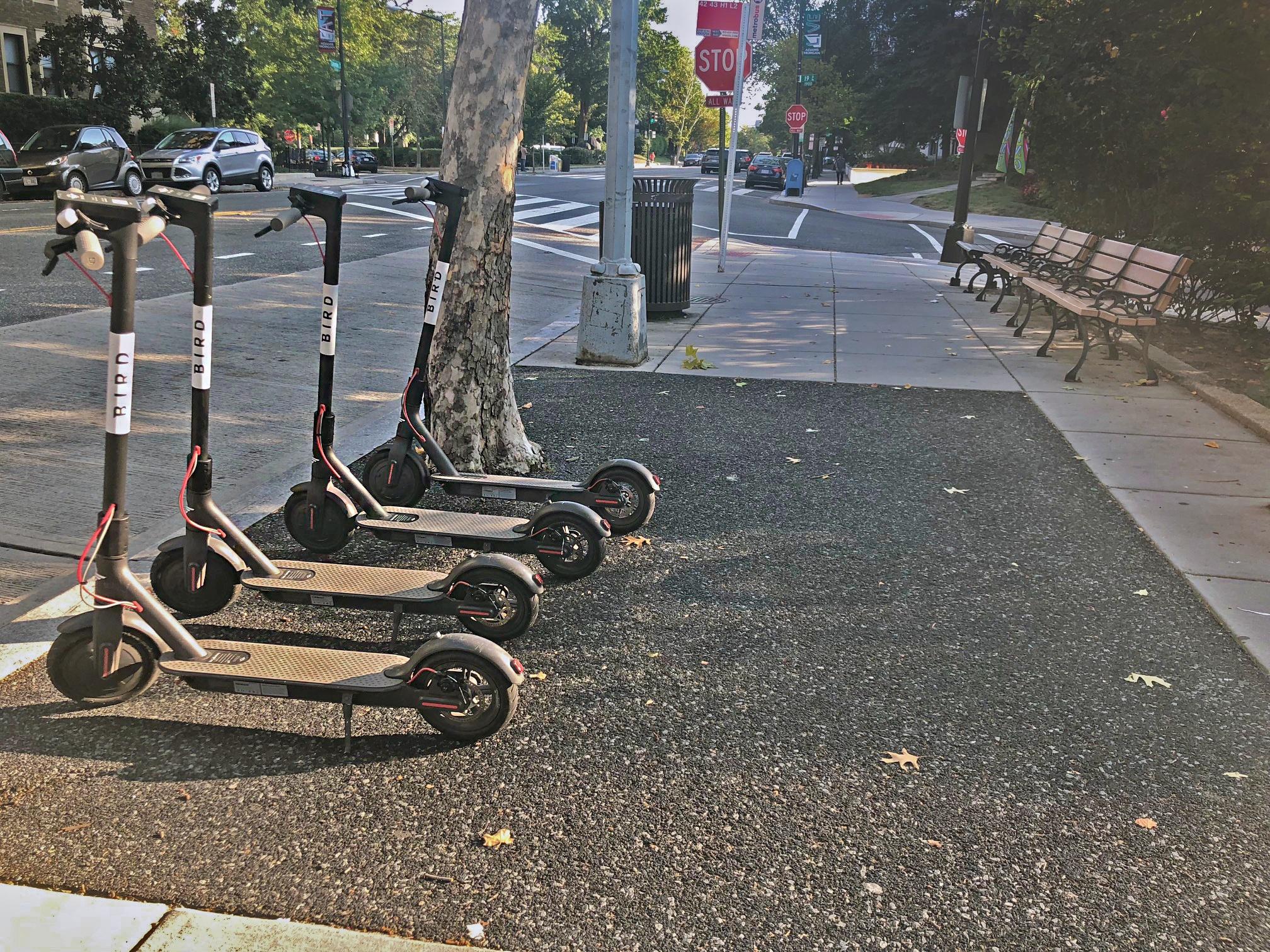 bird-scooters-DC-bike-lanes-design-smart-cities